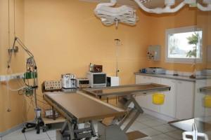 Salle de chirurgie digestive Clinique vétérinaire de Bléré