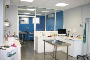 Clinique veterinaire de Montrichard salle de soins