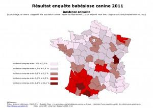 Résultat enquête babésiose canine 2011